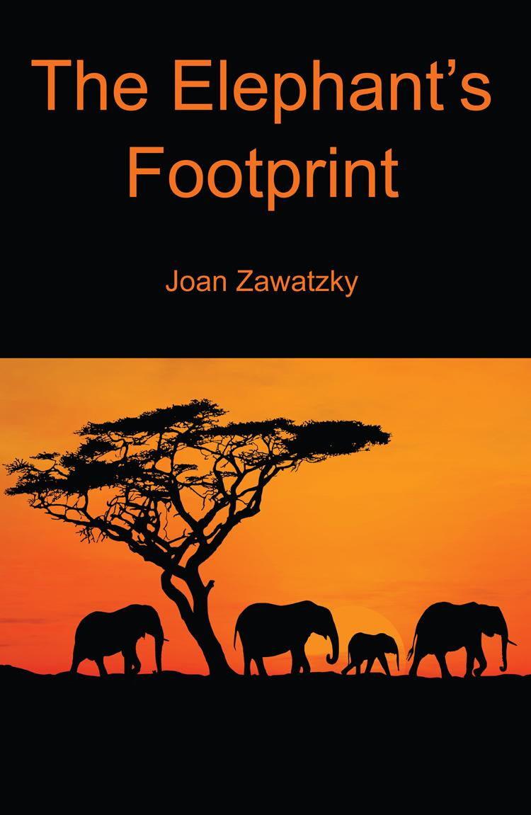 The Elephant's Footprint EB9780987141255