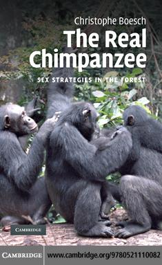 The Real Chimpanzee