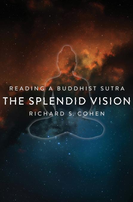 The Splendid Vision: Reading a Buddhist Sutra EB9780231527521