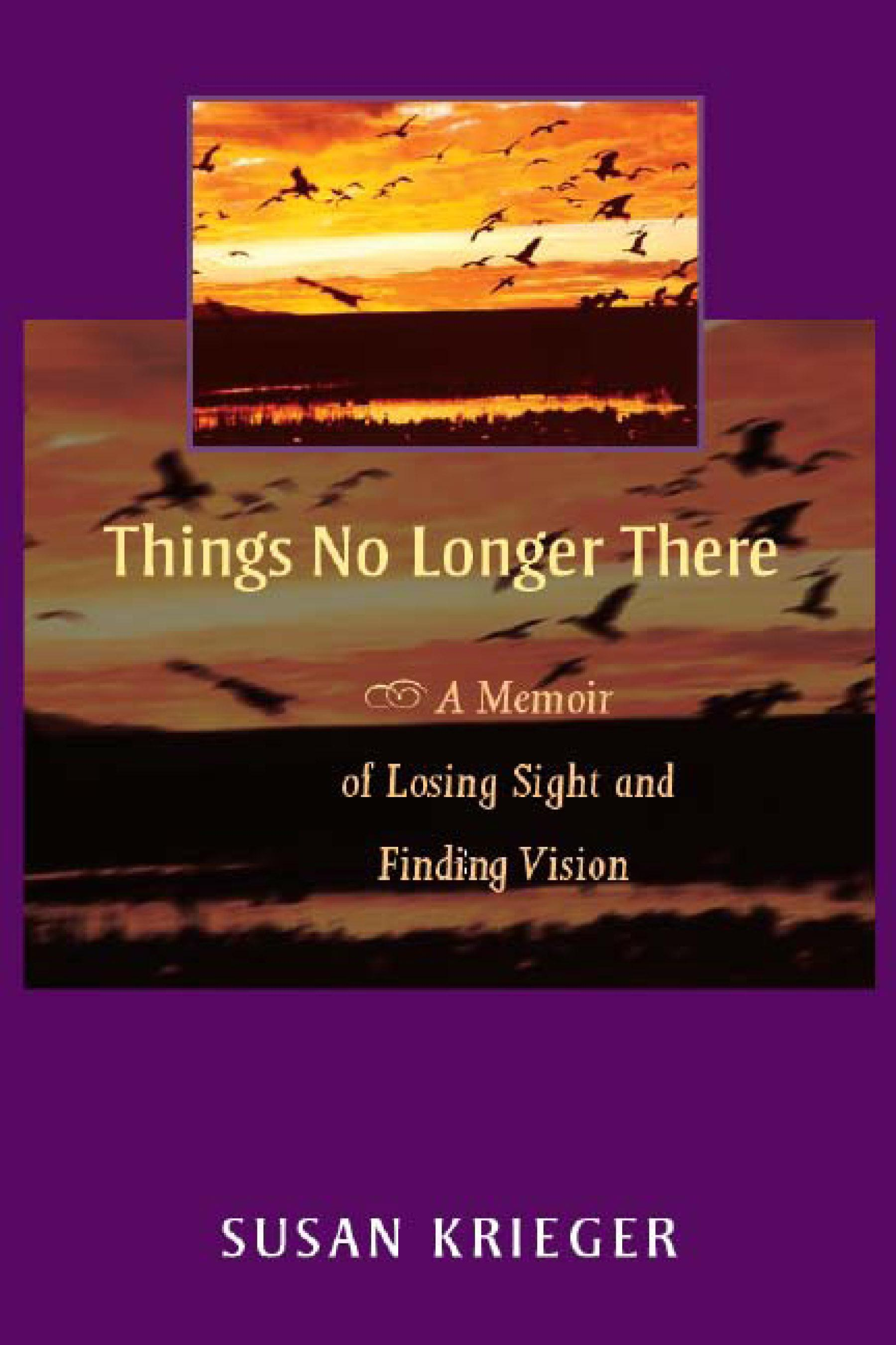Things No Longer There: A Memoir of Losing Sight and Finding Vision EB9780299208639