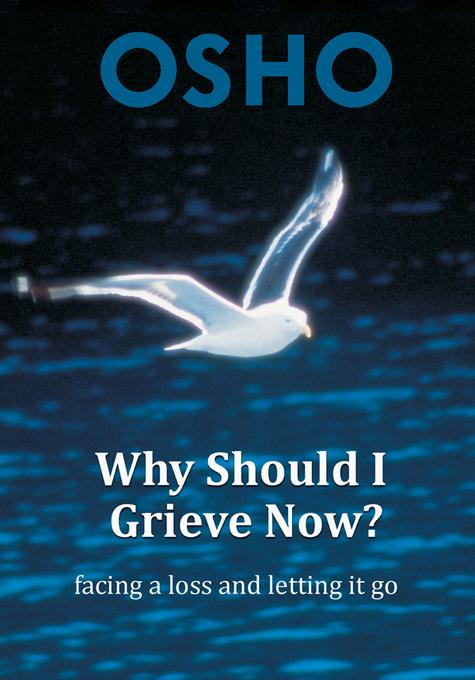 Why Should I Grieve Now?: facing a loss and letting it go EB9780880504256