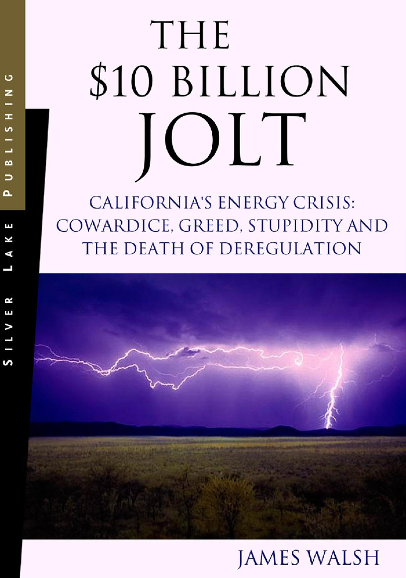 $10 Billion Jolt, The: California's Energy Crisis: Cowardice, Greed, Stupidity and the Death of Deregulation EB9781563438226