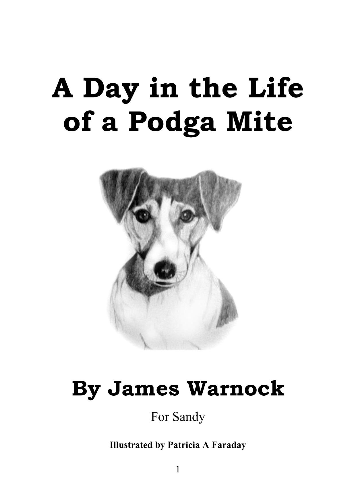 A Day in the Life of Podga Mite EB9781609762032