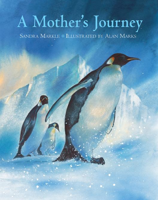 A Mother's Journey EB9781607340683