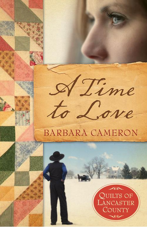 A Time To Love: Quilts of Lancaster County Series #1 EB9781426720178