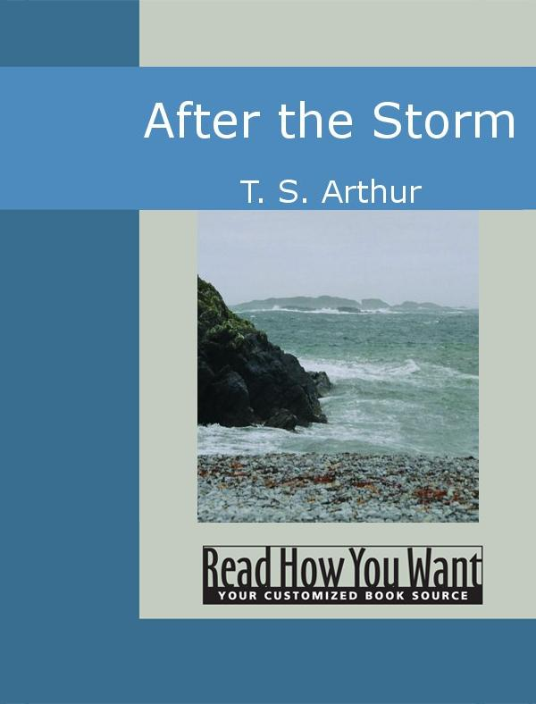 After the Storm EB9781442935464