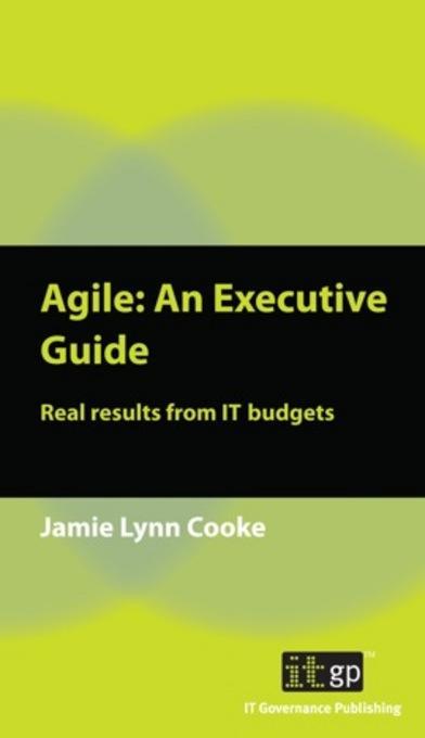Agile: An Executive Guide EB9781849281904