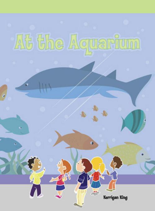 At the Aquarium EB9781448835218