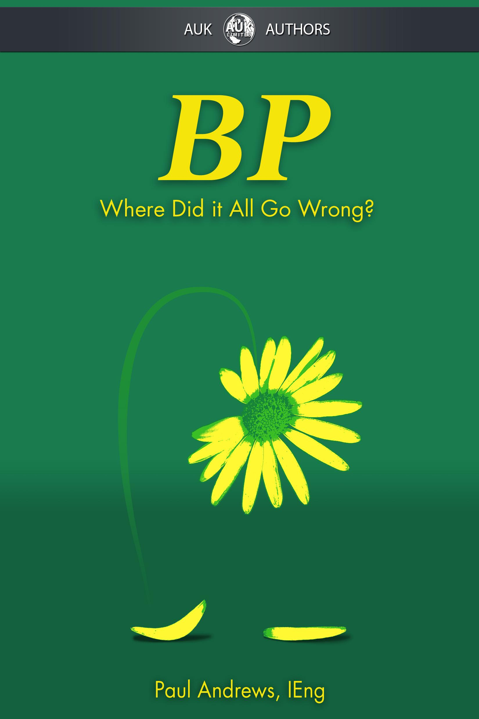 BP - Where Did it All Go Wrong? EB9781849891509