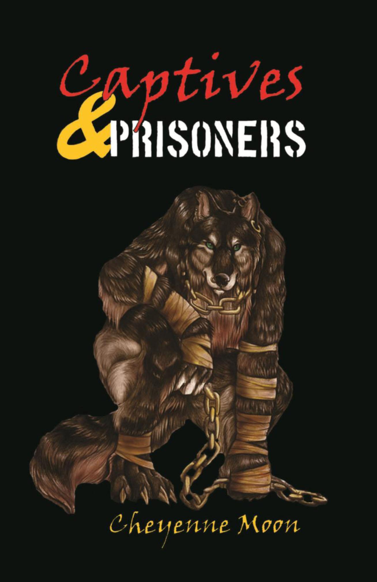 Captives and Prisoners EB9781938919015