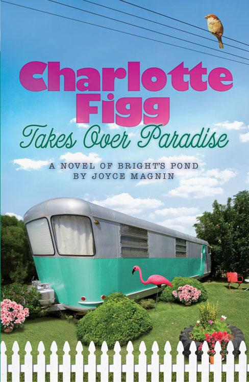 Charlotte Figg Takes Over Paradise: A Novel of Bright's Pond EB9781426713682
