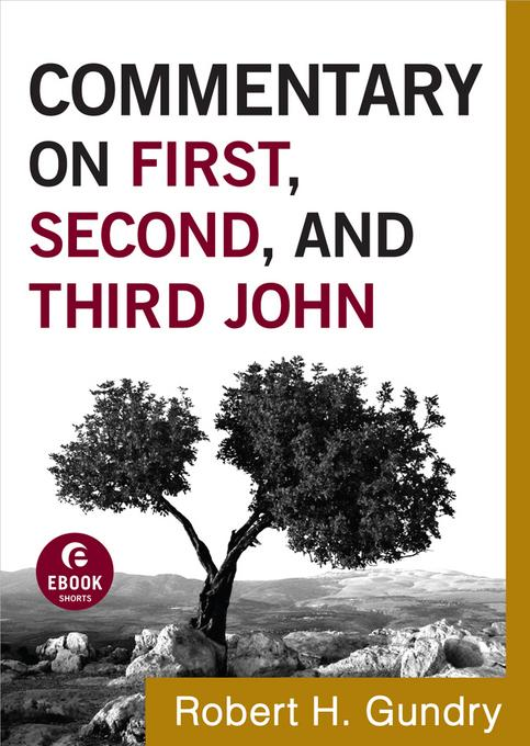 Commentary on First, Second, and Third John EB9781441237750