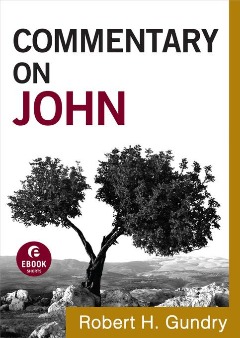 Commentary on John EB9781441237613