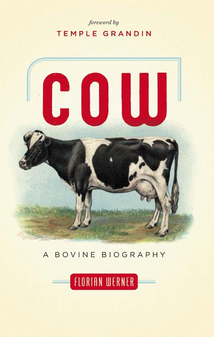 Cow: A Bovine Biography EB9781553659808