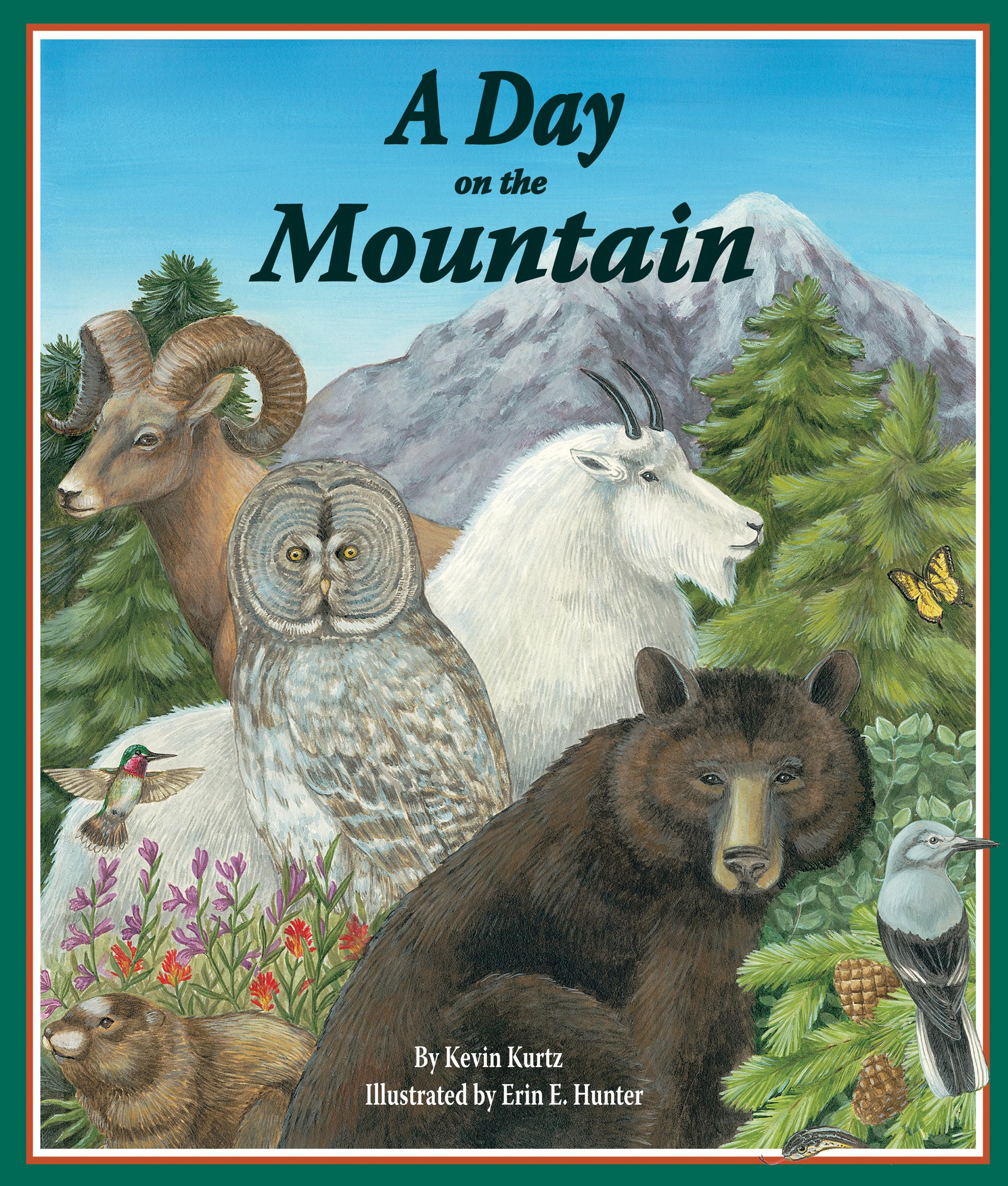 Day on the Mountain, A EB9781607180982