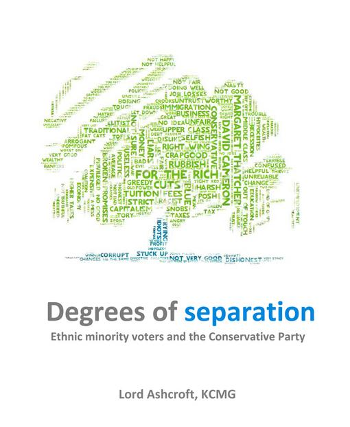 Degrees of Separation: Ethnic Minority Voters and the Conservative Party EB9781849544177