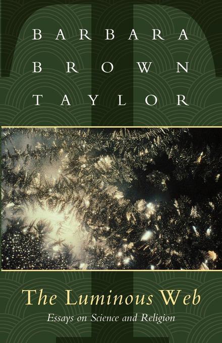 Luminous Web: Essays on Science and Religion EB9781461635673
