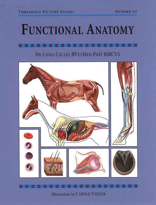 FUNCTIONAL ANATOMY EB9781905693771