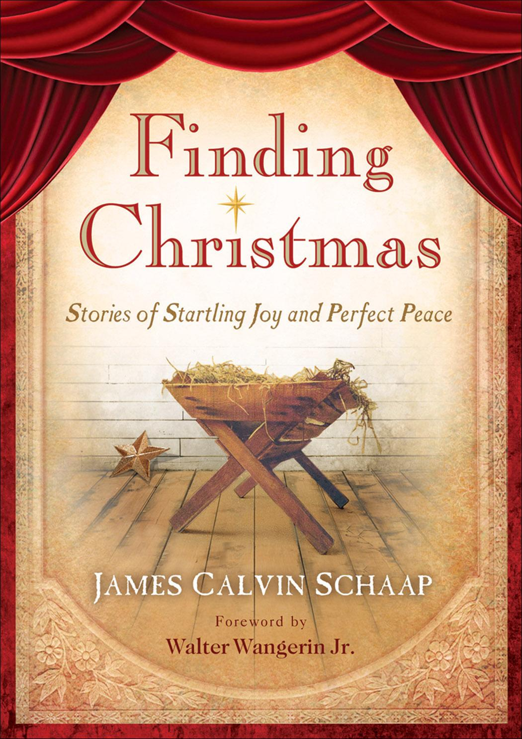 Finding Christmas: Stories of Startling Joy and Perfect Peace EB9781441204752