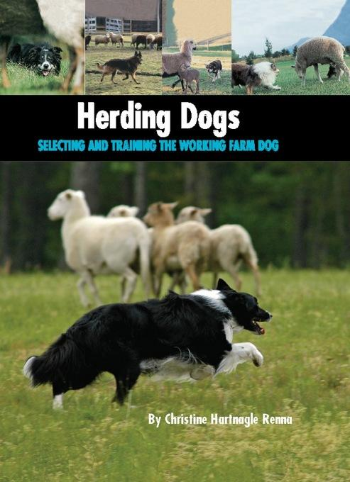 Herding Dogs: Selecting and Training the Working Farm Dog EB9781593786533