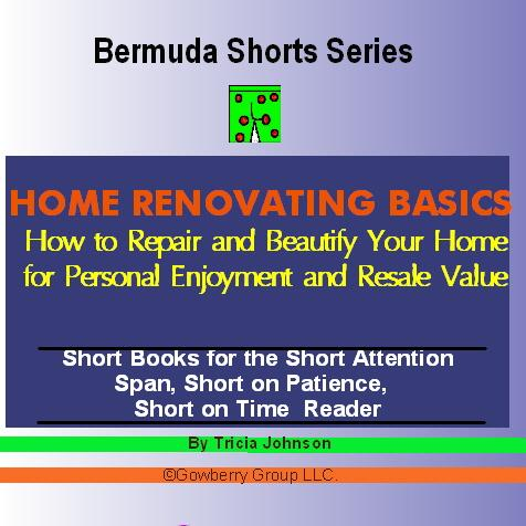 Home Renovating Basics:  How to Repair and Beautify Your Home EB9781597489188