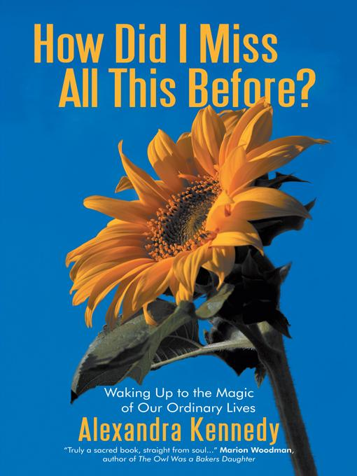 How Did I Miss All This Before?: Waking Up to the Magic of Our Ordinary Lives EB9781450207997