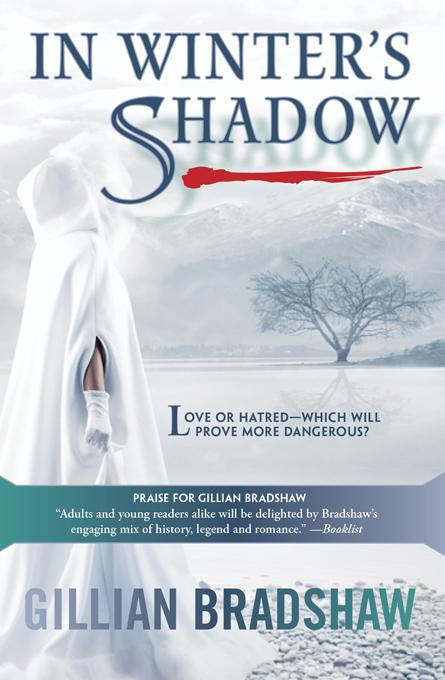 In Winter's Shadow EB9781402269622