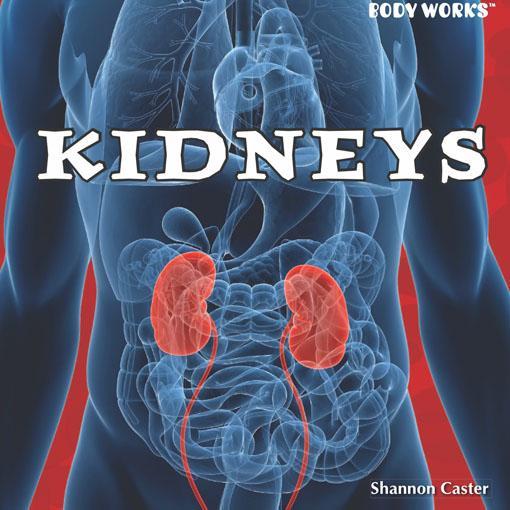 Kidneys EB9781448801008