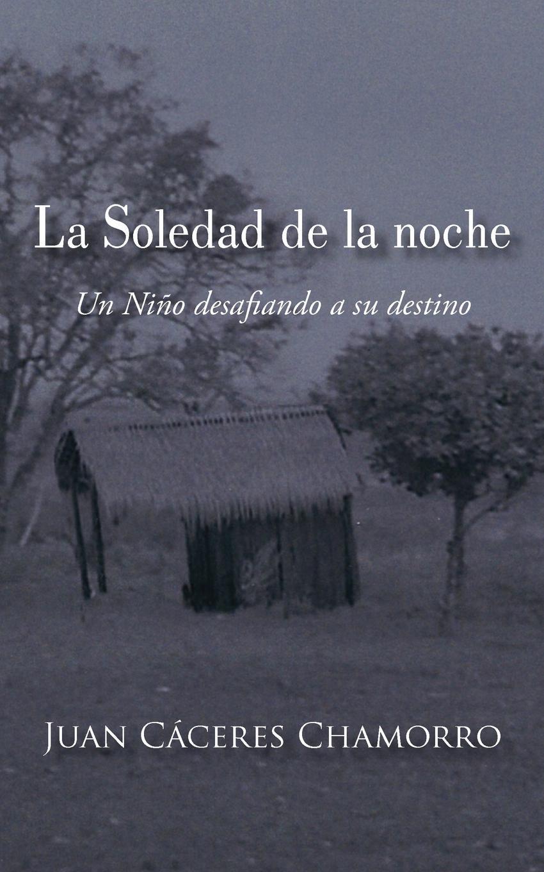 La Soledad de la noche: Un Ni?o desafiando a su destino EB9781450292764