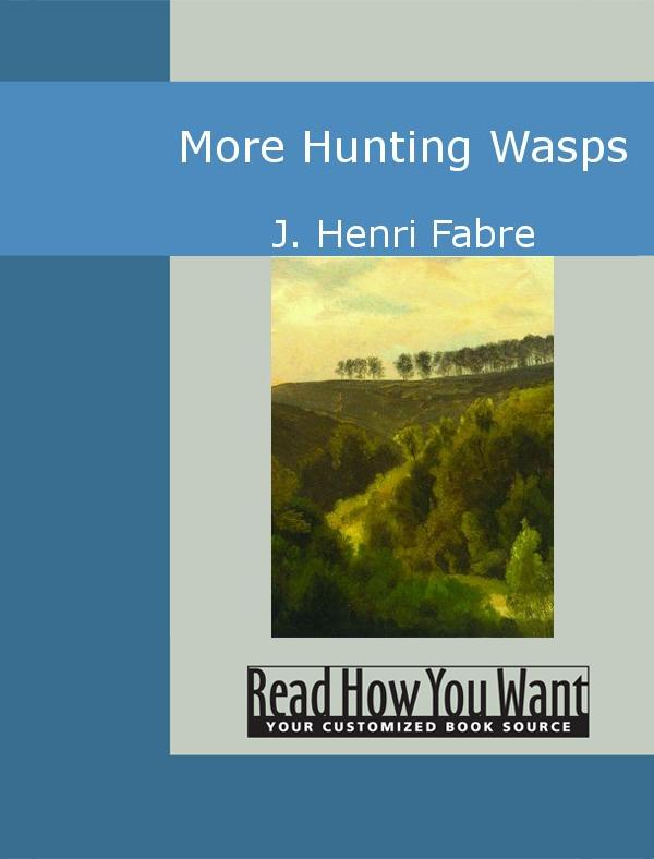 More Hunting Wasps