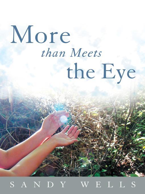 More than Meets the Eye EB9781452546933
