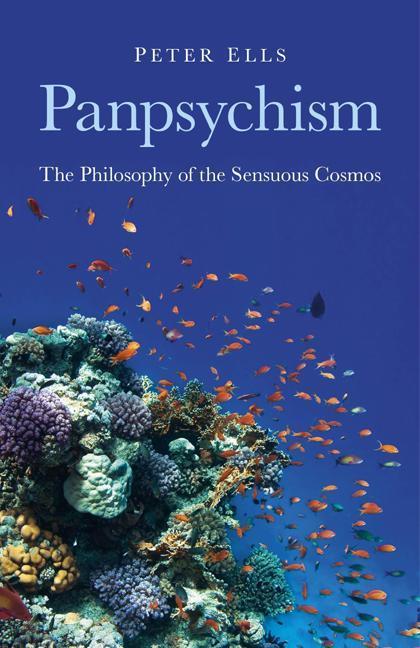 Panpsychism EB9781780990187