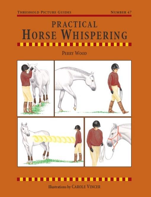 Practical Horse Whispering EB9781905693658
