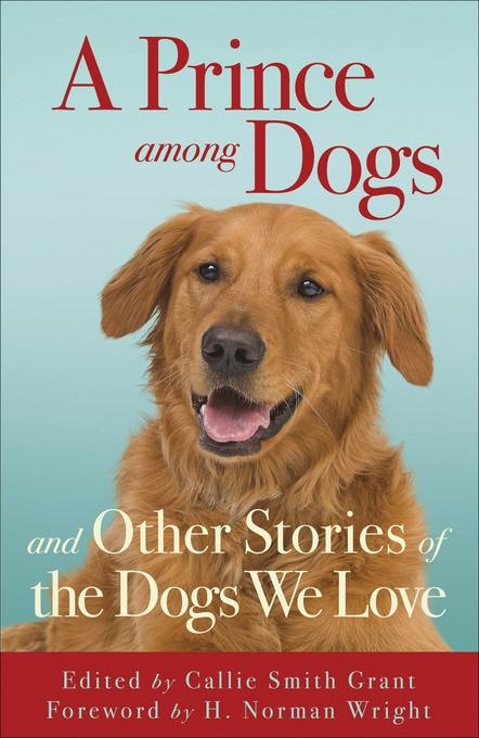 Prince among Dogs, A: and Other Stories of the Dogs We Love EB9781441236951