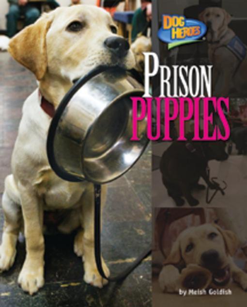 Prison Puppies EB9781617722066