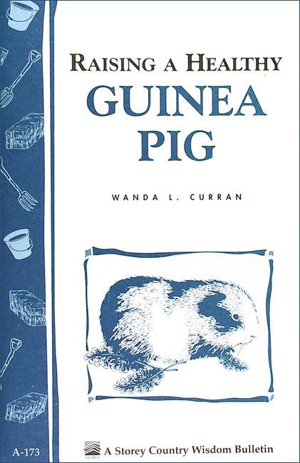Raising a Healthy Guinea Pig: Storey's Country Wisdom Bulletin A-173 EB9781603423052