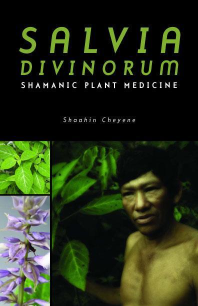SALVIA DIVINORUM - Shamanic Plant Medicine EB9781599714042