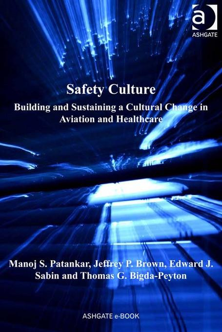 Safety Culture: Building and Sustaining a Cultural Change in Aviation and Healthcare EB9781409437710