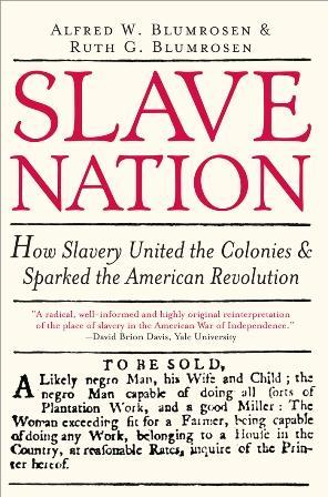 Slave Nation EB9781402226113