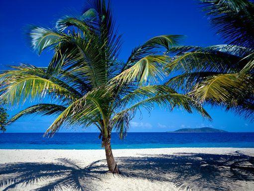 St. Croix, US Virgin Islands EB9781588438980