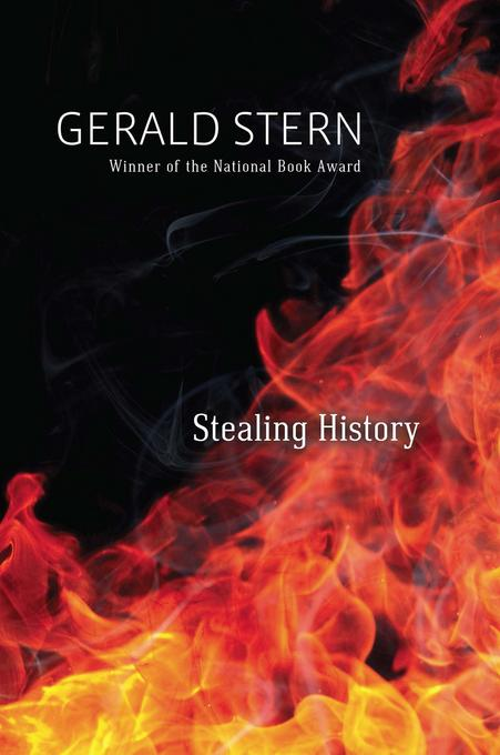 Stealing History EB9781595341167