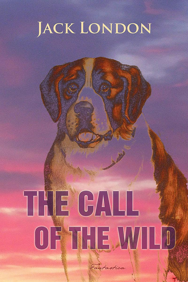 The Call of the Wild EB9781907832772