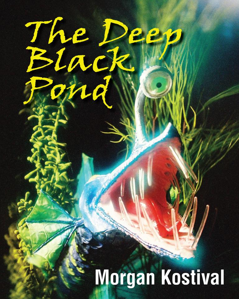 The Deep Black Pond EB9781612045160