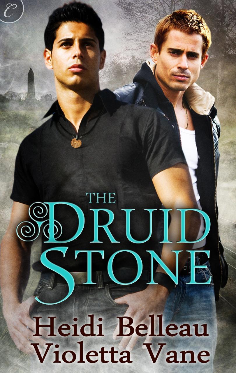 The Druid Stone EB9781426894190