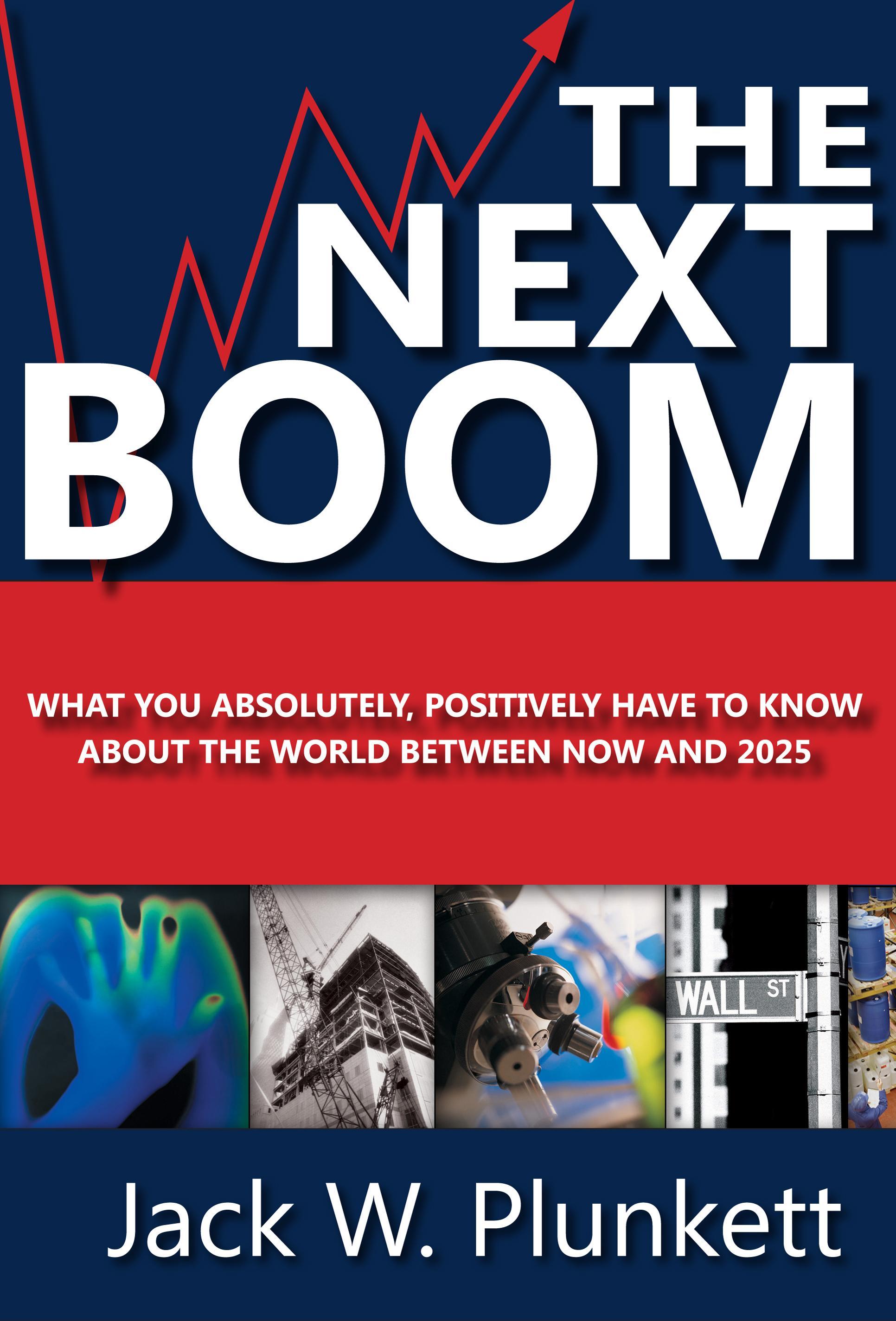 The Next Boom EB9781608799015