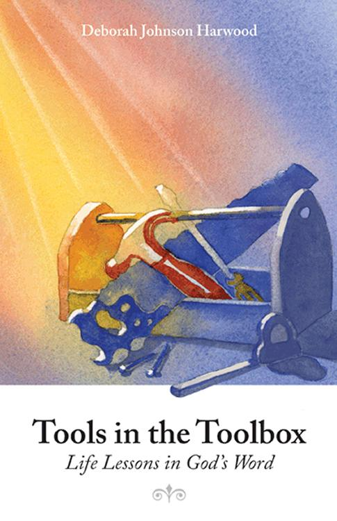 Tools in the Toolbox : Life Lessons in God's Word EB9781937520076