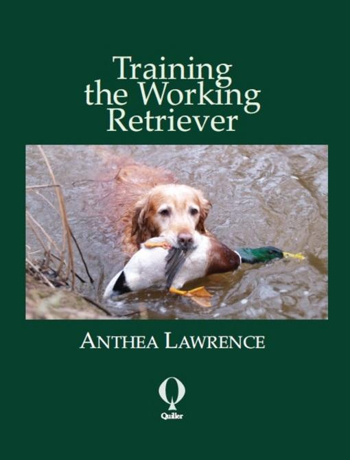 Training the Working Retriever EB9781846891601