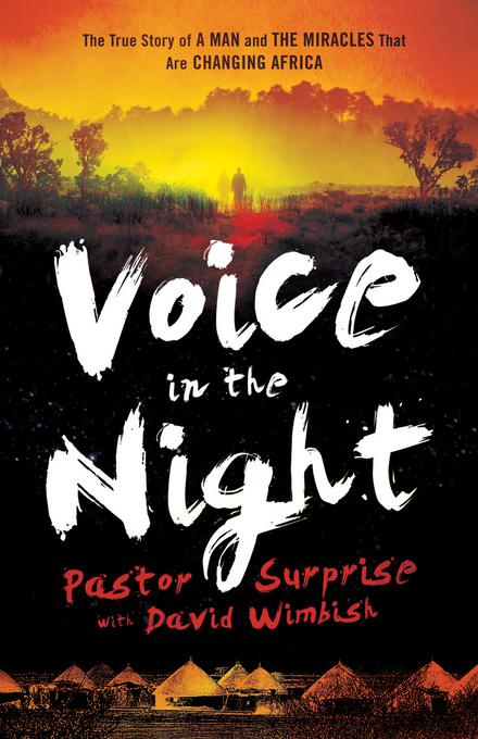 Voice in the Night: The True Story of a Man and the Miracles That Are Changing Africa EB9781441270191