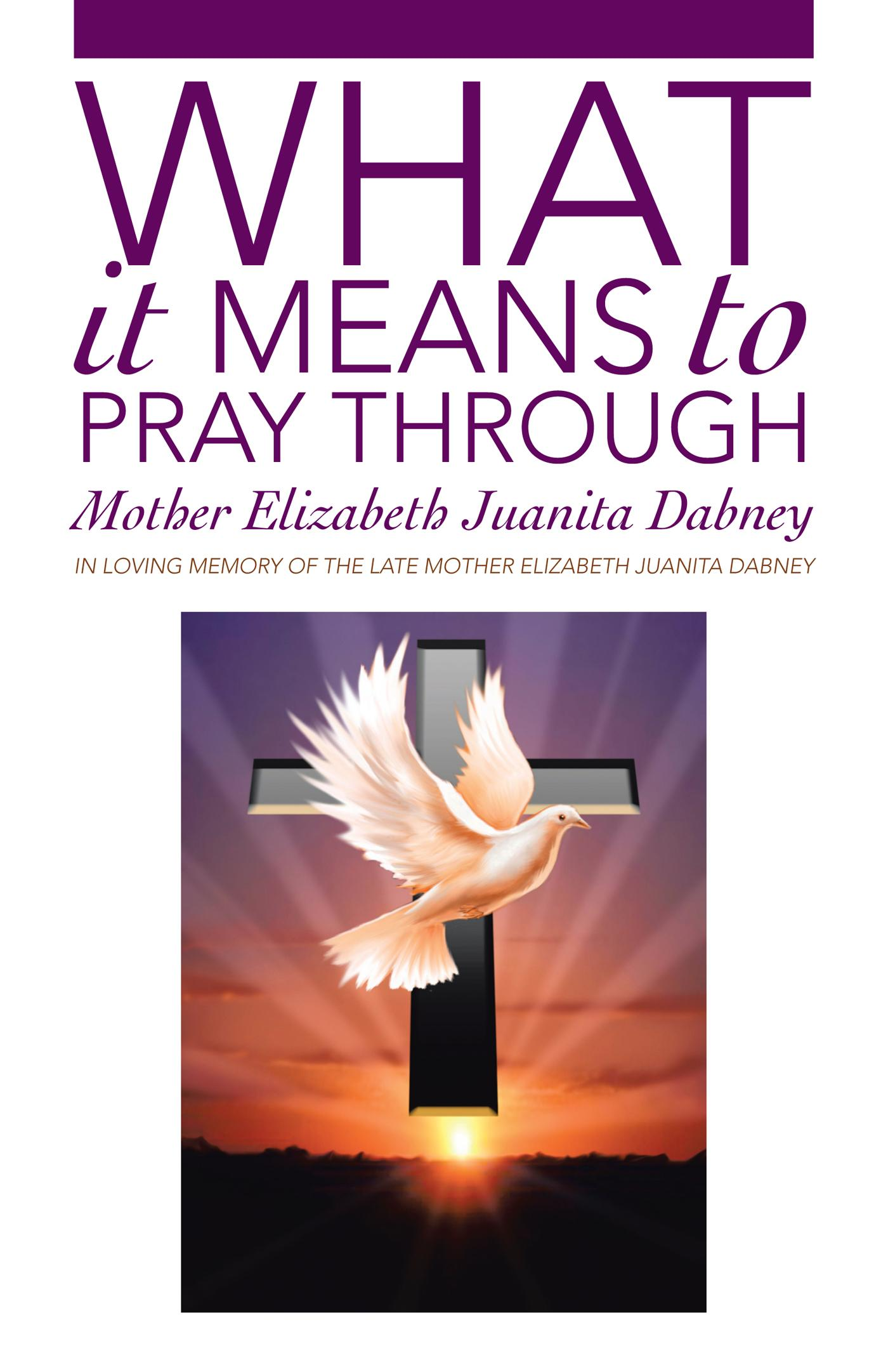 What It Means To Pray Through EB9781475922509