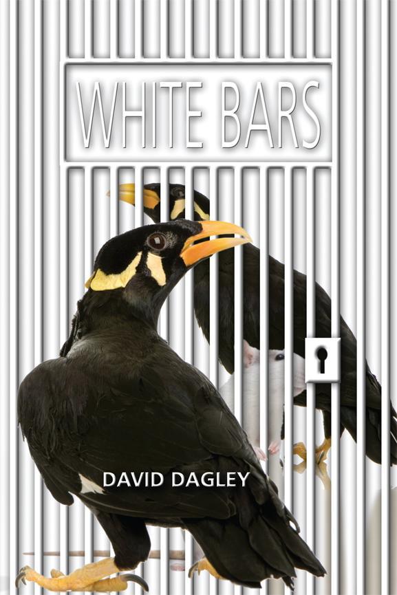 White Bars EB9781612045269